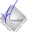 VH Consultant